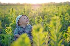 A criança está sentando-se na foto da grama backlit o infante senta-se nos arvoredos verdes densos Criança feliz imagem de stock