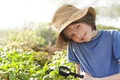 a criança explora a natureza Foto de Stock Royalty Free
