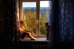 Criança fêmea bonito com o cabelo louro que senta-se na soleira, olhando para fora a janela no por do sol Fotos de Stock Royalty Free