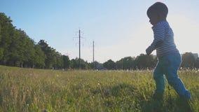 A criança feliz corre na grama verde e no sorriso O rapaz pequeno toma suas primeiras etapas em uma grama fresca em um parque da  video estoque