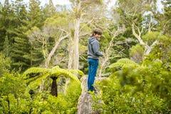 Criança feliz em uma trilha no fundo natural imagem de stock royalty free