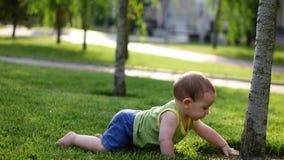 A criança feliz está tocando lentamente na árvore pela primeira vez Bebê que rasteja lentamente no prado de O mundo pequeno do be vídeos de arquivo