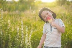 Criança feliz que come cookies sob a forma do gelado As crianças comem no jardim Menino no jardim que guarda um gelado fotografia de stock royalty free