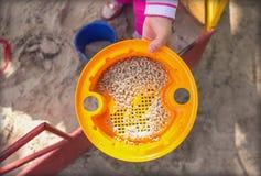 A criança guarda um brinquedo em uma caixa de areia Foto de Stock