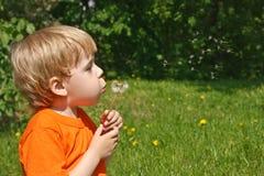 Criança na natureza Imagem de Stock