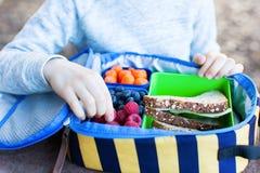 Criança no almoço escolar fotografia de stock