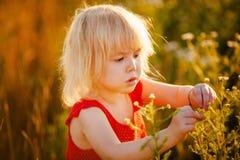 Criança no campo Fotos de Stock