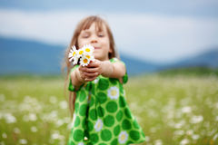 Criança no campo da camomila imagens de stock