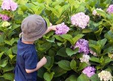 Criança no jardim Fotos de Stock Royalty Free