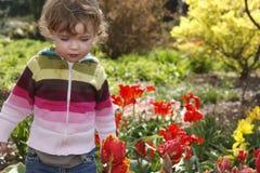 Criança no jardim fotografia de stock royalty free