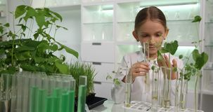 Criança no laboratório de química, menina da escola que estuda as plantas, projetos educacionais das crianças na sala de aula filme