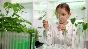 Criança no laboratório de química, turma de Biologia crescente das plantas da plântula da ciência da escola filme
