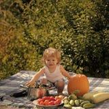 Criança no piquenique imagens de stock royalty free
