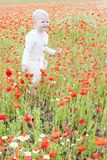Criança no prado Fotografia de Stock Royalty Free