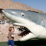 A criança olha nas maxilas do tubarão Fotografia de Stock Royalty Free