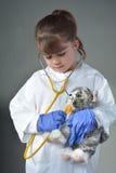 Criança pequena que quer ser um veterinário fotos de stock royalty free
