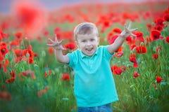 Criança pré-escolar bonito no campo da papoila, guardando um ramalhete de flores selvagens, sorrindo fotografia de stock