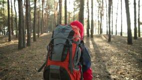 Criança que anda na aventura em fugas de montanha, trajetos, caminhando com trouxa, caminhantes que caminham na floresta, aprecia filme