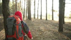 Criança que anda na aventura em fugas de montanha, trajetos, caminhando com trouxa, caminhantes que caminham na floresta, aprecia video estoque