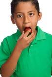 Criança que come a morango Foto de Stock