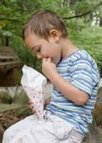 Criança que come a pipoca exterior Imagens de Stock Royalty Free