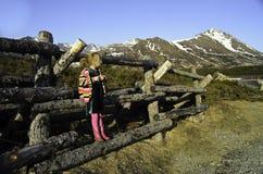Criança que está em uma cerca do log na frente da montanha Imagem de Stock Royalty Free