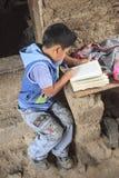 Criança que estuda em sua casa Fotos de Stock Royalty Free