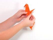 Criança que faz o origâmi vermelho do pássaro Fotos de Stock Royalty Free