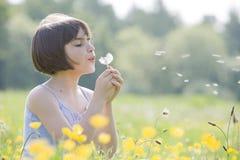 Criança que funde dandelion2956 Fotografia de Stock Royalty Free