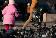 Criança que joga com as pombas na cidade Imagem de Stock Royalty Free