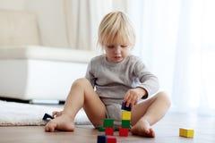 Criança que joga com blocos de madeira Fotos de Stock Royalty Free