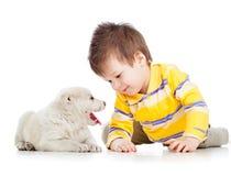 Criança que joga com cão de cachorrinho fotos de stock