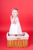 Criança que joga em uma cesta Fotografia de Stock