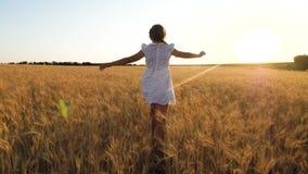 Criança que joga o super-herói em um campo a menina feliz está voando em um campo do trigo maduro, em um fundo do por do sol lent vídeos de arquivo