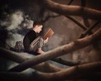 Criança que lê o livro velho da história no ramo de árvore Foto de Stock
