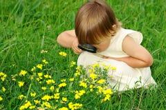 Criança que olha flores através da lupa Imagens de Stock