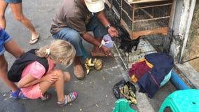 Criança que olha um vendedor do pássaro alimentar um magabat filme