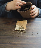 Criança que planta sementes no potenciômetro da turfa Imagens de Stock