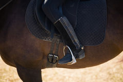 Criança que senta-se em uma parte traseira do cavalo Fotos de Stock Royalty Free