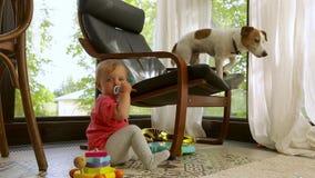 Criança que senta-se perto da cadeira com cão em casa vídeos de arquivo