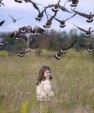 Criança que tem o divertimento exterior com gansos imagens de stock royalty free