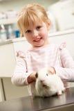 Criança que toma a cobaia à cirurgia veterinária fotos de stock royalty free