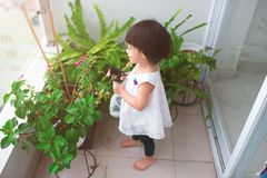 Criança que toma das plantas Spr molhando da menina bonito primeiro Imagem de Stock Royalty Free