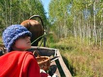 Criança que viaja em um cavalo-carro Fotografia de Stock
