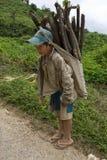A criança transporta a lenha, Laos Fotografia de Stock