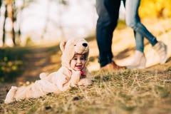 Criança vestida como um urso imagens de stock