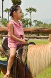 Crianças asiáticas que jogam na exploração agrícola Fotos de Stock