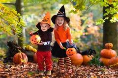Crianças com as abóboras em Dia das Bruxas Fotografia de Stock Royalty Free