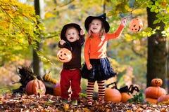 """Képtalálat a következőre: """"autumn leaves kids pumpkin"""""""