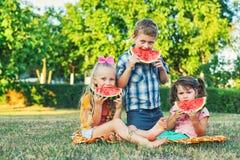 Crianças com melancia em um piquenique fotos de stock
